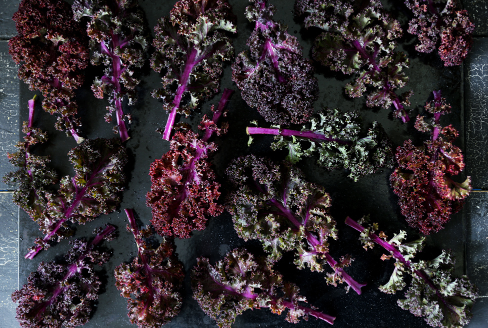 Purple Kale Chips by Swoon Food