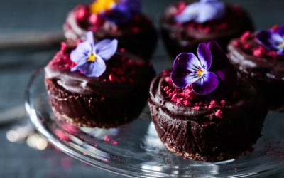 Raw Chocolate Cheesecakes