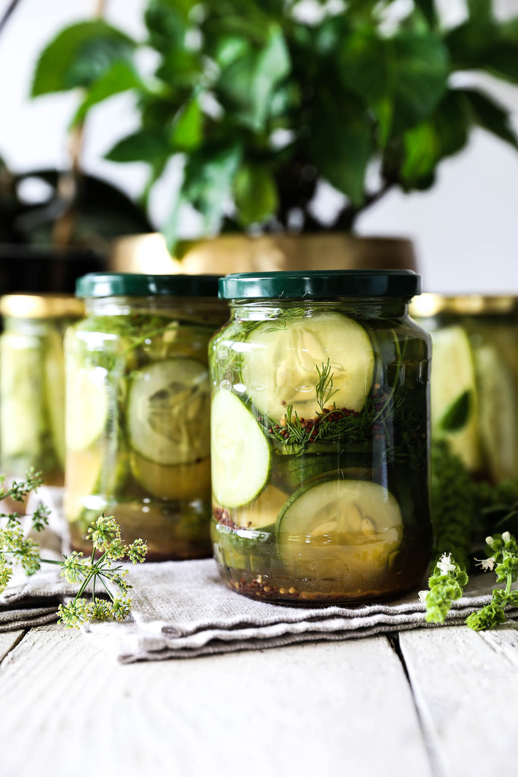 Quick Dill Pickled Cucumbers